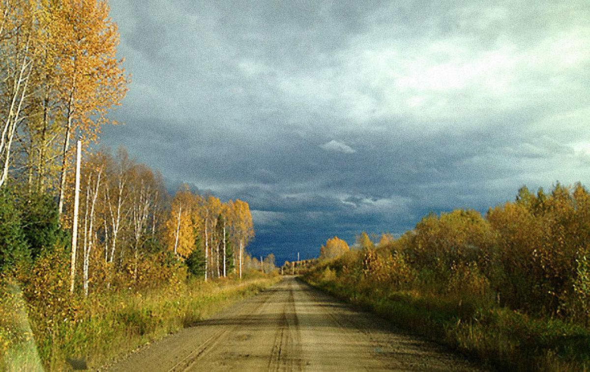 The road bathed in the hues of autumn.